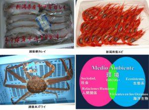 新潟漁協のブランド